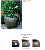 Ornamental Pots